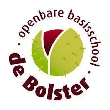 Logo obs de Bolster